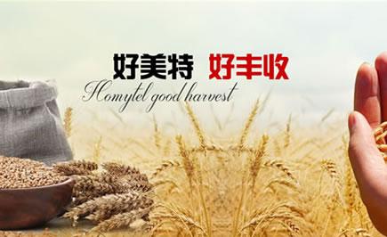 南宁专业的农业类网站建设公司